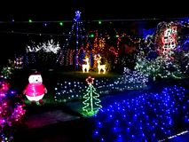 Christmas Lights in a front yard. Christmas lights in front of a house royalty free stock photo