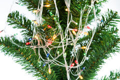 Christmas lights hanging in tree Stock Photography