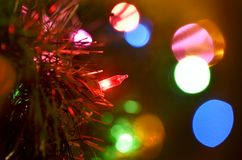 Christmas Lights for Holidays Royalty Free Stock Images