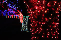 Christmas lights at night. Christmas lights on trees at night Stock Photos