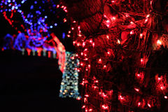 Christmas lights at night. Christmas lights on trees at night Royalty Free Stock Photography