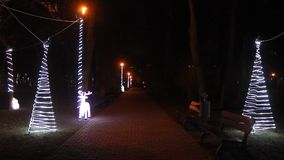 Christmas lights at night in the park stock video footage