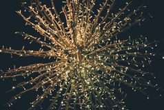Christmas lights. Ornament of Christmas lights in Tartu, Estonia Stock Images
