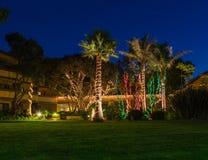 Christmas lights on palm trees stock photography