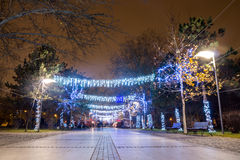 Christmas lights in park stock image