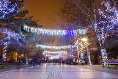 Christmas lights in park royalty free stock image