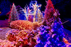 Christmas lights in the park Royalty Free Stock Images