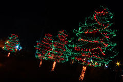 Christmas Lights - Red and Green Trees Royalty Free Stock Photography