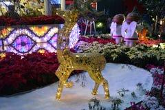 Christmas lights reindeer Stock Image
