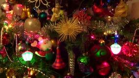 Christmas Lights on a Tall Tree stock video footage