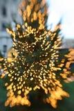 christmas lights tree Στοκ φωτογραφίες με δικαίωμα ελεύθερης χρήσης