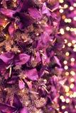 Christmas lights and tree backdrop royalty free stock image