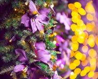 Christmas lights and tree backdrop stock image