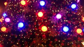 Christmas lights in a tree. Night time Royalty Free Stock Images