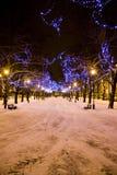 christmas lights trees Στοκ φωτογραφία με δικαίωμα ελεύθερης χρήσης