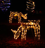 Christmas Lights - Two Deer Royalty Free Stock Image
