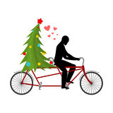 Christmas Lover. Lovers of bicycling. Man rolls christmas tree o Stock Images
