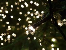 Christmas macro Royalty Free Stock Photography