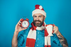 Christmas man hold alarm clock and cup. Hipster in santa hat, scarf smile on blue background. New year, xmas holidays celebration. Countdown to midnight. Time royalty free stock images
