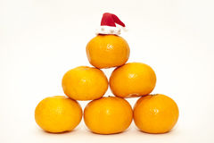 Christmas mandarins. In a Christmas hat Royalty Free Stock Images