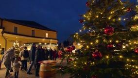 Christmas Market Hellbrunn Palace, Salzburg, Austria. Christmas Market, Christkindlmarkt Hellbrunn Palace, Hellbrunn Advent Magic, Salzburg, Austria, Europe stock footage