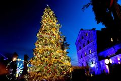 Christmas market tree - Toronto royalty free stock image