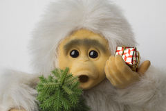 Christmas marmoset 2016 Stock Image