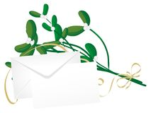 Christmas mistletoe Royalty Free Stock Image