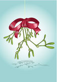 Christmas mistletoe Royalty Free Stock Photography
