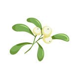Christmas mistletoe with berries Stock Photography