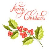 Christmas mistletoe branch drawing. Stock Photos