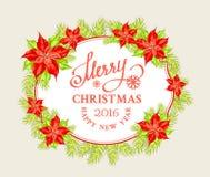 Christmas mistletoe branch Royalty Free Stock Image