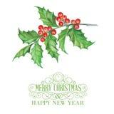 Christmas mistletoe. Royalty Free Stock Photos