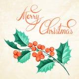 Christmas mistletoe brunch. Royalty Free Stock Photo