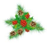 Christmas mistletoe, cones, pine needles royalty free stock photo