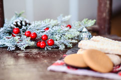 Christmas mistletoe Royalty Free Stock Images