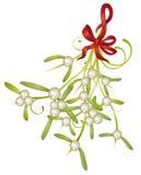 Christmas, mistletoe Stock Photo