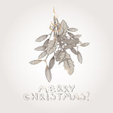 Christmas mistletoe hand drawn sketch. Great for greeting cards, holiday design Stock Images