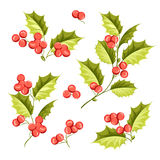 Christmas mistletoe holiday set Royalty Free Stock Photos