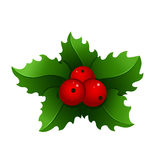 Christmas mistletoe icon Stock Images