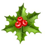 Christmas mistletoe icon Royalty Free Stock Image