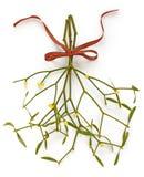 Christmas mistletoe, kissing ball Stock Images