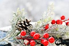 Christmas mistletoe royalty free stock photography