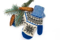 Christmas mittens and branch of a pine, on the isolated white background royalty free stock photography