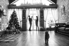 Christmas mom dad son and cat. Young father and mother playing with son and cats in white loft Royalty Free Stock Photography