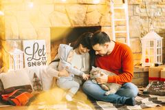 Christmas mom dad son and cat. Young father and mother playing with son and cats in white loft Stock Images
