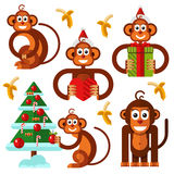 Christmas monkeys icons set. Flat style vector stock illustration of christmas monkey. Merry christmas monkey icons set. Monkey decorate the xmas tree, banana Royalty Free Stock Images