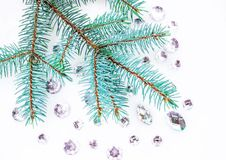 Blue spruce branch with crystals for decoration. Royalty Free Stock Photo