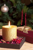 Christmas mood Royalty Free Stock Images