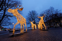 Christmas moose herd made of led light Royalty Free Stock Images